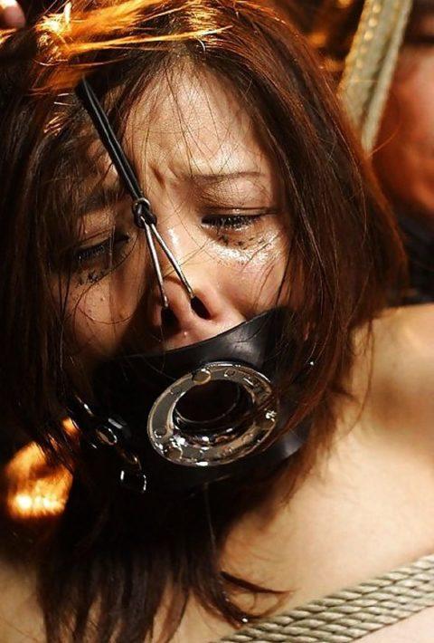 鼻フックとかいう驚異のブス製造器具wwwwwwwwwwwwww(画像30枚)・2枚目