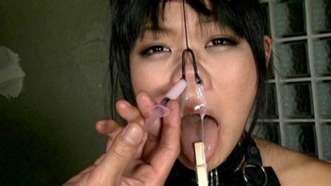 鼻フックとかいう驚異のブス製造器具wwwwwwwwwwwwww(画像30枚)・24枚目