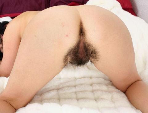 ワイよりケツ毛の濃い女の画像集(26枚)・21枚目