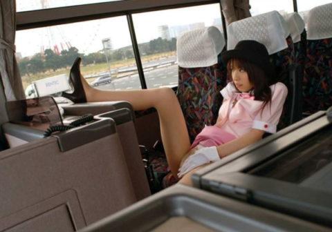 【エロ画像】バスガイドと運転手が結婚する率が高い理由がこちらwww納得だわwwwwwwwwww