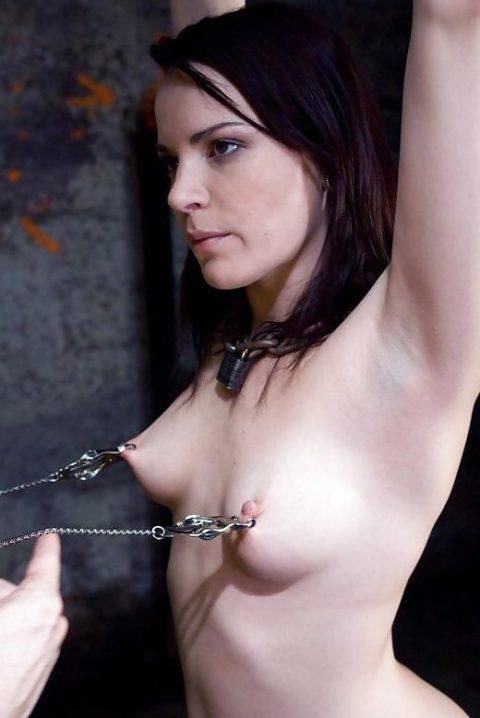 これマジで痛いだろ・・・乳首を虐めてる調教中の画像集(30枚)・21枚目