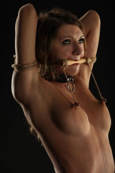 これマジで痛いだろ・・・乳首を虐めてる調教中の画像集(30枚)・6枚目