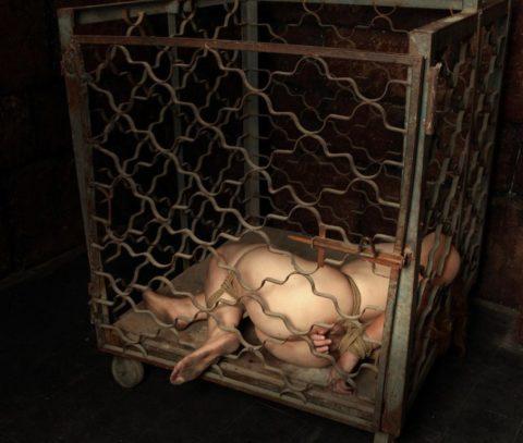 奴隷として買ってきた女たちの末路がこちらwwwwwwwwww(画像30枚)・28枚目