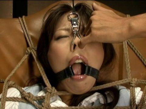 【豚鼻注意】このSM器具を付けてビデオに出たらもう終わりだと思う・・・(画像30枚)・28枚目