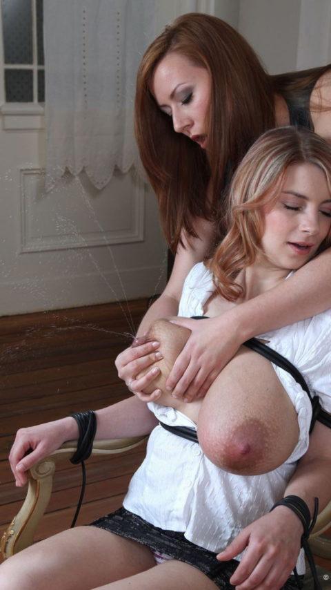 【喰らえ!】母乳スプラッシュとかいうマッマの必殺技wwwwwwwwww(画像30枚)・28枚目