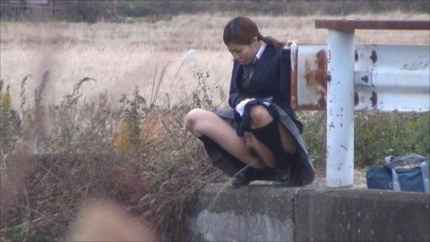【画像あり】通学途中に野ションしてるJKが発見されるwwwwwwwwwwww・17枚目