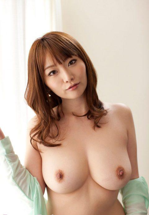 【おっぱい】エロい乳房をジャンル別に集めたエロ画像まとめ。(189枚)・47枚目