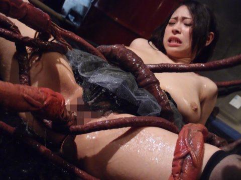 【実写版】これぞ日本のAVの真骨頂wwwwww触手に犯される女たち(画像30枚)・21枚目