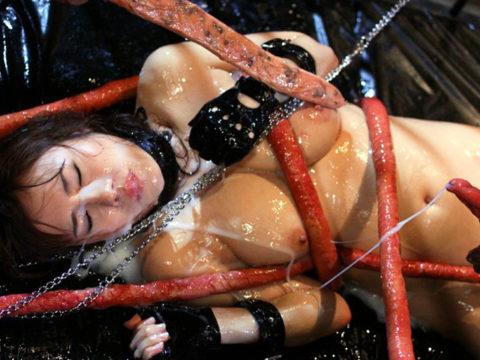 【実写版】これぞ日本のAVの真骨頂wwwwww触手に犯される女たち(画像30枚)・27枚目