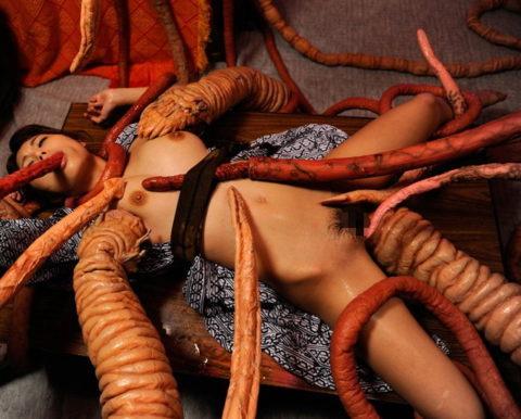 【実写版】これぞ日本のAVの真骨頂wwwwww触手に犯される女たち(画像30枚)・4枚目