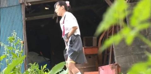 【フェイクニュース】暑さでイッちゃったJKの野外オナニーが激写されるwwwwwwwww・3枚目