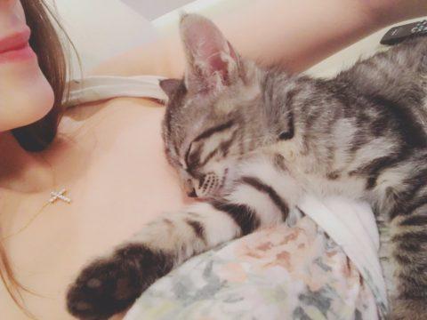 【お宝画像】ダレノガレ明美さん、乳首をアップしてしまったエロ画像集(83枚)・40枚目