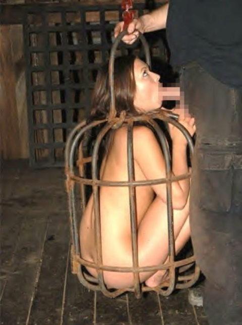 【調教中】鳥かごで飼育されてる性奴隷たちの画像集(25枚)・1枚目