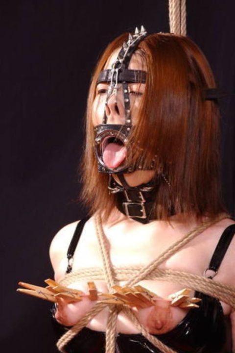 笑ってはいけない「鼻フック」の調教エロ画像集(36枚)・17枚目