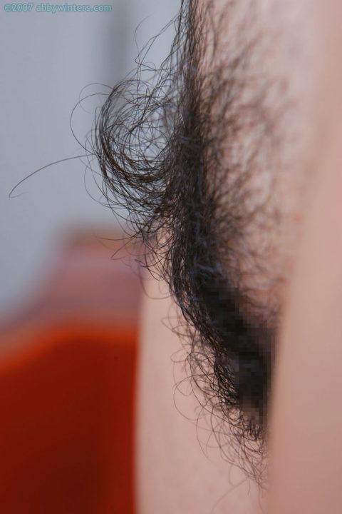 【剛毛】密度と量が異常すぎ・・・マン毛を処理しない女をご覧くださいwwwwww・12枚目