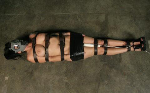 【マニアック】世界のアブナイ奴、ガスマスク付けてセックスする・・・(画像あり)・33枚目