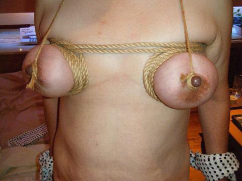 乳首がちょん切れるほど縛られて新境地を開発中まんさんがこちらwwwwww(31枚)・13枚目