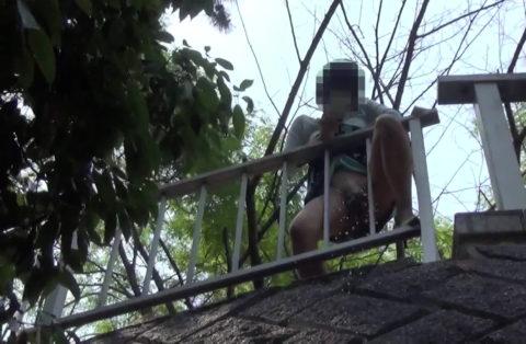 【マジキチ】高所から放尿して解放感を得ている女さんの表情wwwwwwww・14枚目