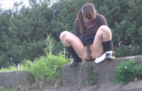 【マジキチ】高所から放尿して解放感を得ている女さんの表情wwwwwwww・18枚目