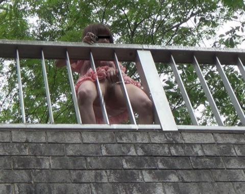 【マジキチ】高所から放尿して解放感を得ている女さんの表情wwwwwwww・19枚目