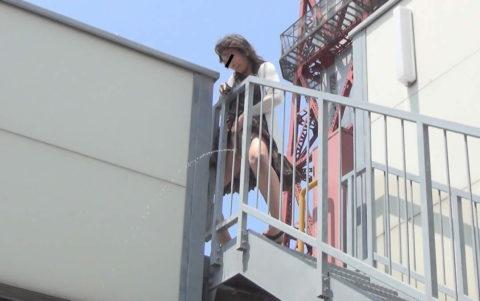 【マジキチ】高所から放尿して解放感を得ている女さんの表情wwwwwwww・2枚目