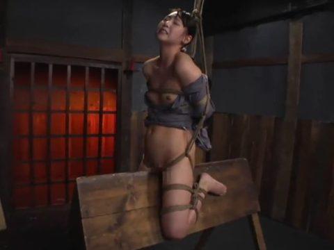 大昔の拷問器具で調教される身体が裂けそうな女がこちら。(画像あり)・36枚目