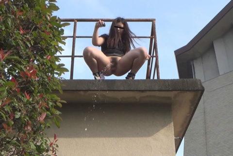 【マジキチ】高所から放尿して解放感を得ている女さんの表情wwwwwwww・7枚目