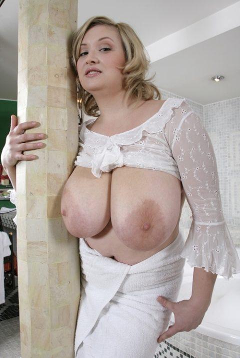 【画像あり】海外サイトでまとめられた「世界の爆乳女子」Hitomiおるやんwwwww・27枚目