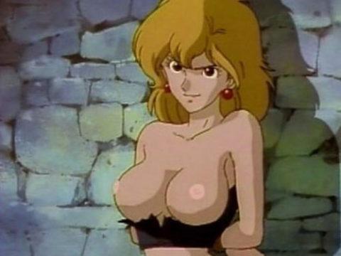 地上波で放送されたアニメ番組のエロシーンだけを集めた画像集。(38枚)