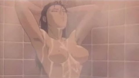 地上波で放送されたアニメ番組のエロシーンだけを集めた画像集。(65枚)・55枚目