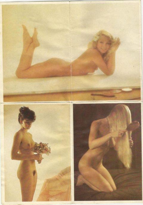 80年代で大人気だった海外ポルノ、これはこれで全然イケるwwwwwww・1枚目