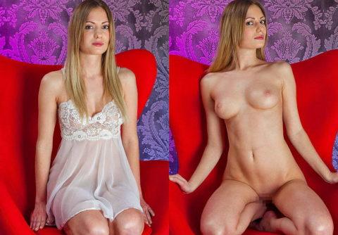 海外美女の「比較画像」服を着てたら分からない身体がガチでエロすぎwwwwww(画像40枚)・25枚目
