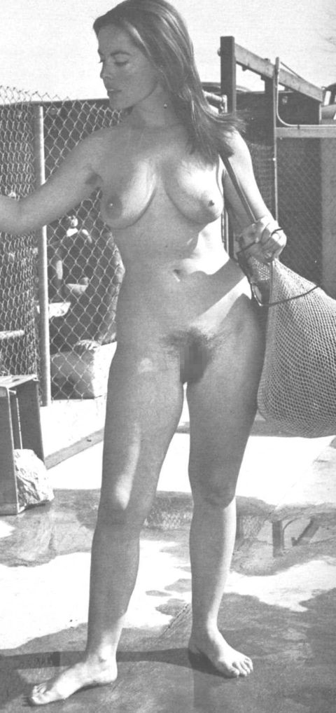 80年代で大人気だった海外ポルノ、これはこれで全然イケるwwwwwww・28枚目