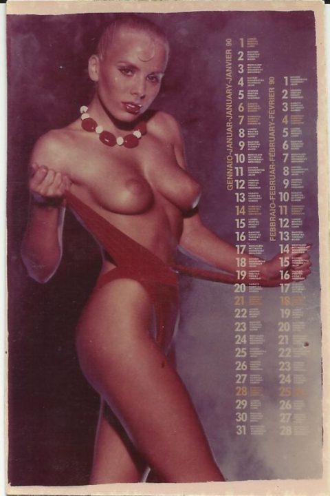 80年代で大人気だった海外ポルノ、これはこれで全然イケるwwwwwww・3枚目