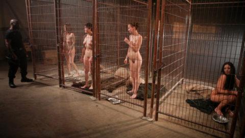"""ガチで存在する""""性奴隷""""ってこんな感じなん?本物やったらキツイわ。。(画像あり)・16枚目"""