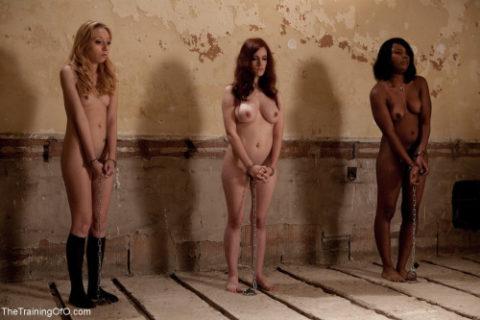"""ガチで存在する""""性奴隷""""ってこんな感じなん?本物やったらキツイわ。。(画像あり)・19枚目"""
