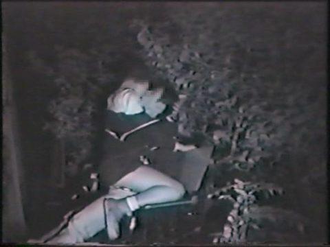 【エロ画像】深夜の公園で 合体 してるカップルが激写されるwwwwww・16枚目