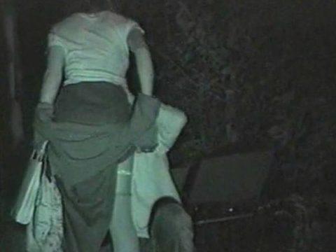 【エロ画像】深夜の公園で 合体 してるカップルが激写されるwwwwww・17枚目