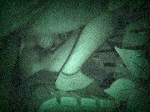 【エロ画像】深夜の公園で 合体 してるカップルが激写されるwwwwww・2枚目