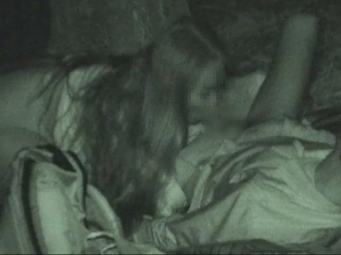 【エロ画像】深夜の公園で 合体 してるカップルが激写されるwwwwww・6枚目