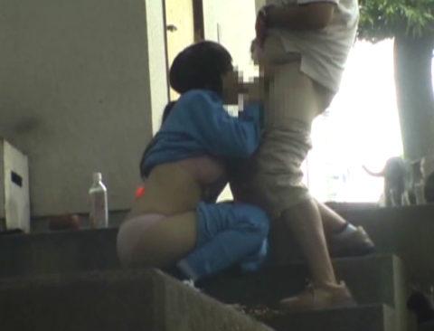 【エロ画像】金無しバカップル、昼間から青姦して撮影されるwwwwww・24枚目