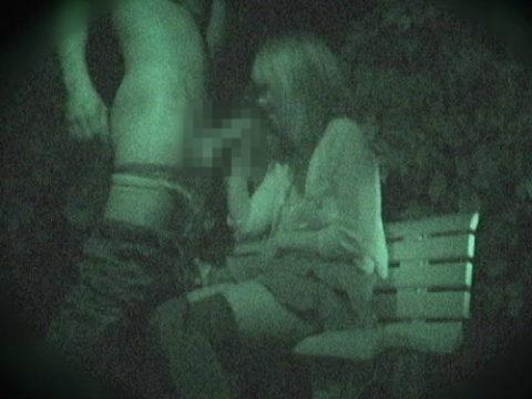 【エロ画像】夜の「青姦スポット」に赤外線カメラを仕込んだ結果wwwwwwww
