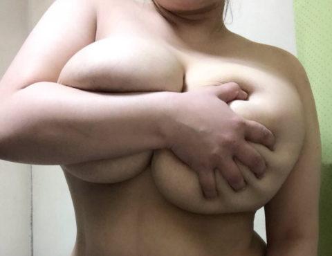 【デブ】肥満体型の巨乳女しか愛せないヤツの為のエロ画像まとめ。。(58枚)