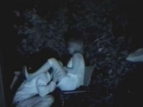【エロ画像】夜の「青姦スポット」に赤外線カメラを仕込んだ結果wwwwwwww・11枚目