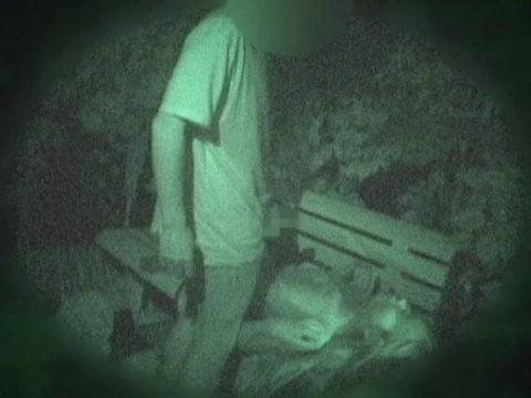 【エロ画像】夜の「青姦スポット」に赤外線カメラを仕込んだ結果wwwwwwww・17枚目