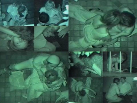 【エロ画像】夜の「青姦スポット」に赤外線カメラを仕込んだ結果wwwwwwww・2枚目
