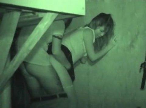 【エロ画像】夜の「青姦スポット」に赤外線カメラを仕込んだ結果wwwwwwww・20枚目