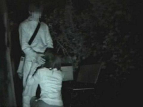 【エロ画像】夜の「青姦スポット」に赤外線カメラを仕込んだ結果wwwwwwww・25枚目