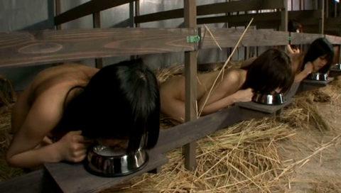 性奴隷にされてしまった女さん、買われてこうなる運命です。。これはヒドイ(エロ画像)・27枚目