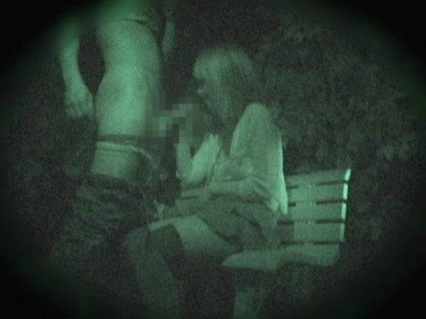 【エロ画像】夜の「青姦スポット」に赤外線カメラを仕込んだ結果wwwwwwww・28枚目